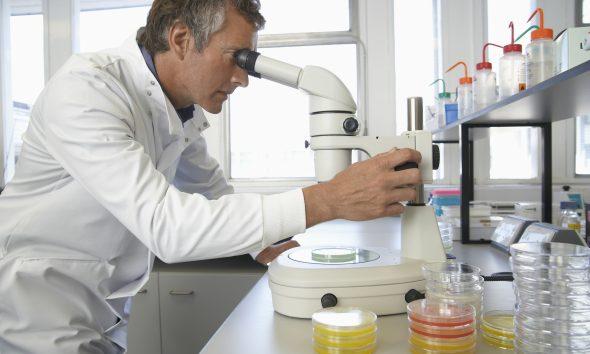 Forsker
